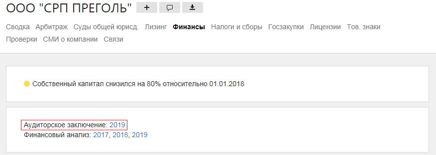 """ООО """"СРП ПРЕГОЛЬ"""" аудиторское заключение 2019"""